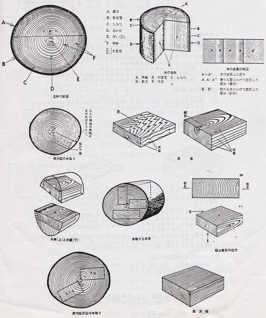 盤の木取り 図説