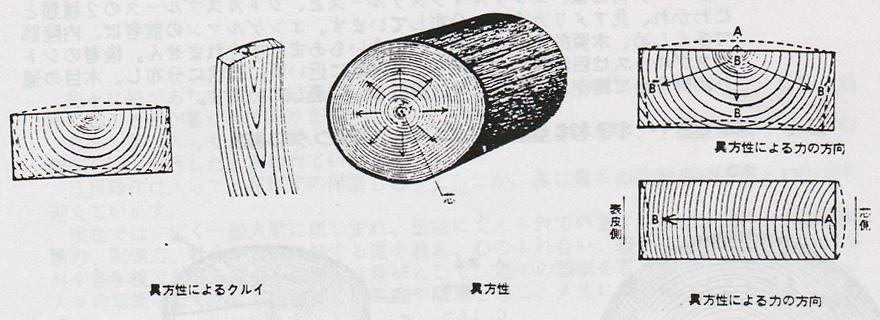 盤のクルイ 図説
