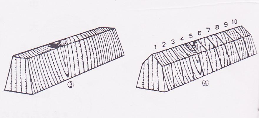 木取りの図説